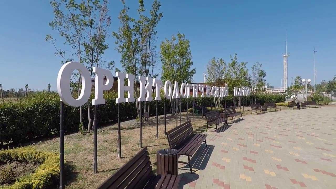 Парк южные культуры в Адлер